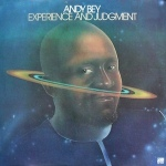 Andy-Bay-Experience-Judgement-lp-front